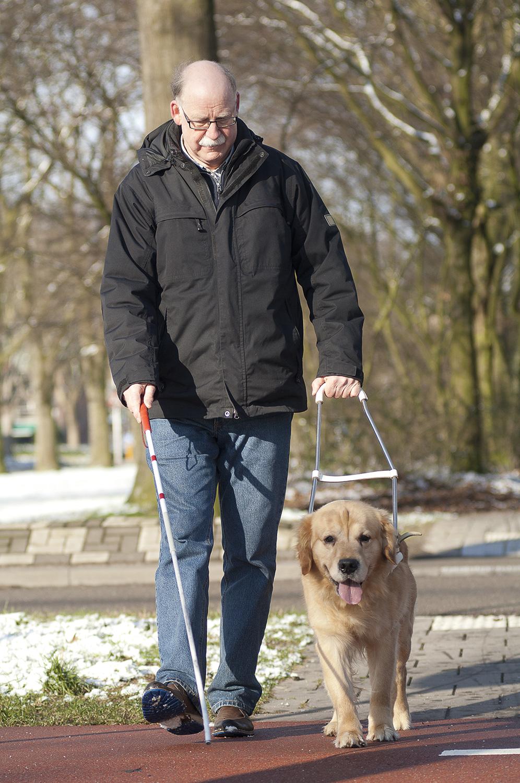Hvor mange svagsynede og blinde er der i Danmark? | Øjenforeningen